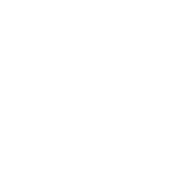 BMG-SERVICES